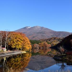 今なら不忘山の雪と紅葉が同時に見ることができます(^^♪